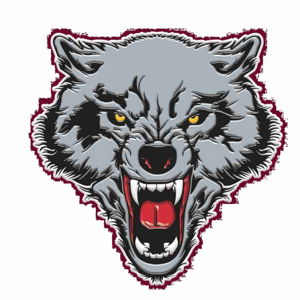 Dilley Wolves logo5