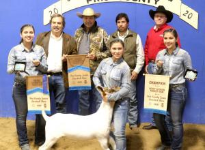 0130 FARM - GRAND CHAMPION GOAT