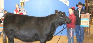 0130 FARM - GRAND CHAMPION HEIFER
